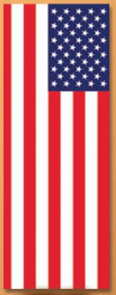 Vertical US 3 x 8 ft drape flag